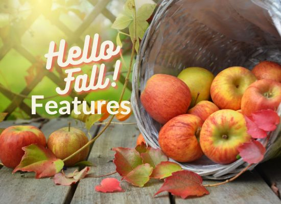 Hello Fall Features