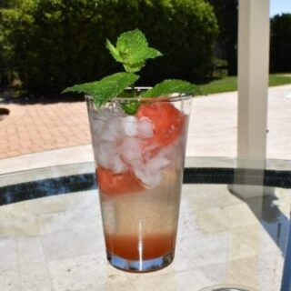 Disneyland's Watermelon Mint Julep